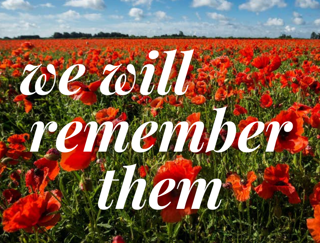 We will remember them - set on a field of poppies